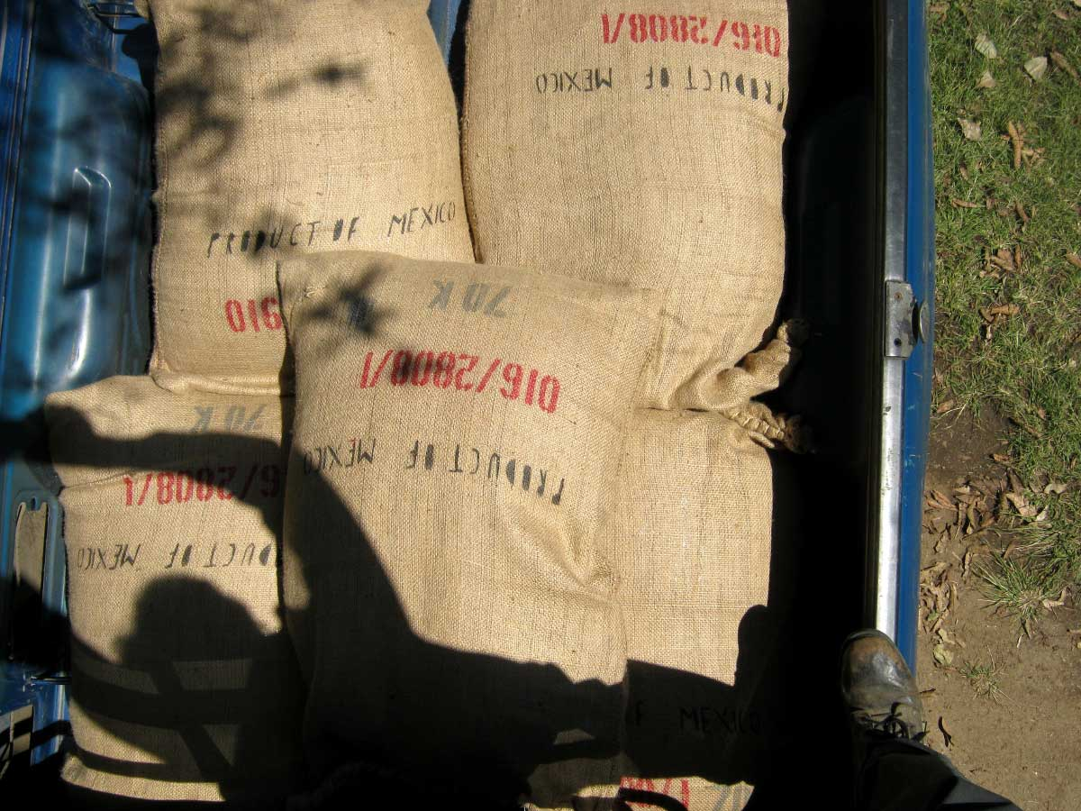 70kg coffee sacks in tres guerras truck trailer